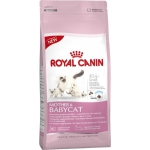 Royal Canin (Роял Канин) Mother BABYCAT (4 кг)