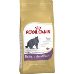 Роял Канин (Royal Canin) Бритиш Хайр Эдалт (4 кг)
