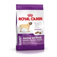 Royal Canin (Роял Канин) Гиант Юниор Актив (15 кг)