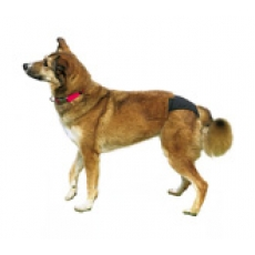 Трусы для собак черные 40-49см. Трикси